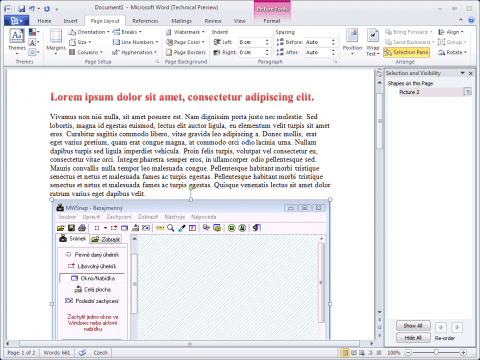 MS Word 2010 a Selection Pane