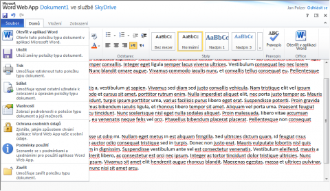 Microsoft Office Web Apps Word